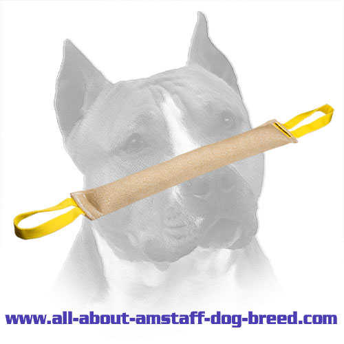 Reliable Jute Amstaff Bite Skills Improvement Tug (Tag)