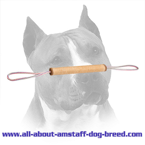 Usable Jute Roll Tug for Amstaff Puppy Training
