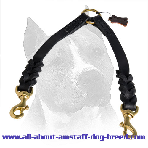 Fancy Leather Amstaff Coupler with Elegant French Braids