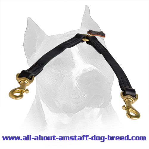 Carefully Stitched Leather Amstaff Coupler for Safe Walking Two Dogs