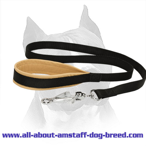 Nylon Amstaff Leash with Intense Padded Handle
