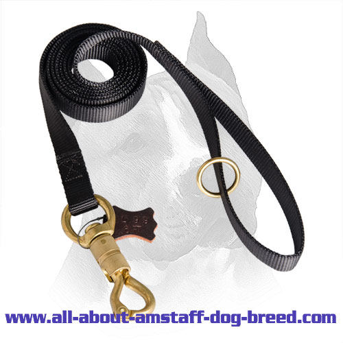 Reliable All-Weather Nylon Amstaff Lead for Police Tracking