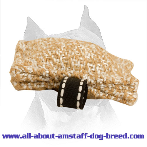 Pocket-Size Bite Tug for Training Amstaff Puppies