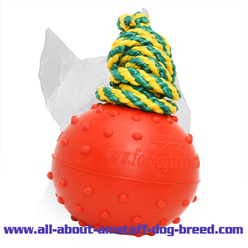 Durable Rubber Amstaff Water Ball for Training - Medium