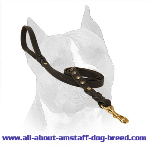 Amstaff Dog Leash With A Durable Brass Snap Hook