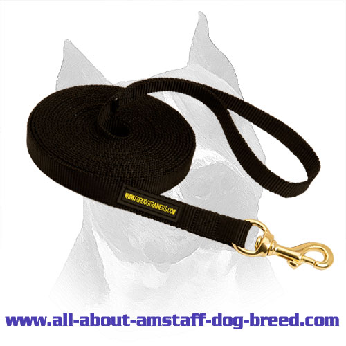 Practicable Amstaff Dog Leash