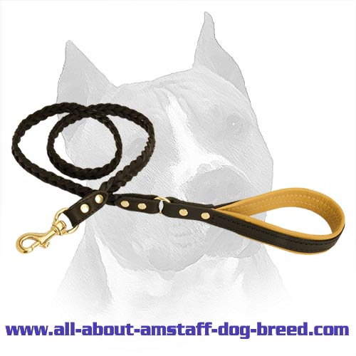 Super Strong Dog Leash With A Durable Brass Hardware