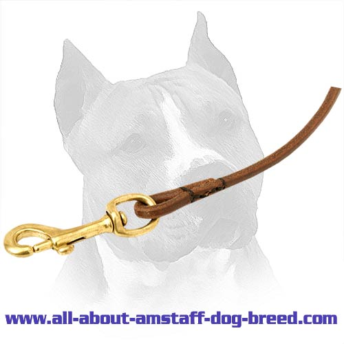 Leather Dog Leash With Decorative Stitching