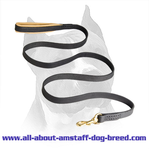 American Staffordshire Terrier Leash Leather with Easy in Use Massive Snap Hook