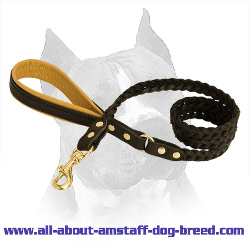 Amstaff Dog Leash Will Serve You For Years