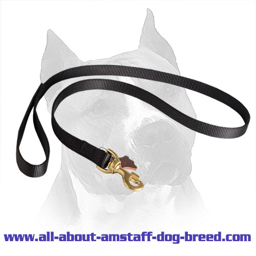 Nylon Dog Lead for Amstaff Walking