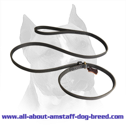 Amstaff Leather Lead and Choke Collar with Stitched Handle