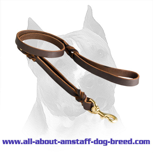 Leather Amstaff Lead Brass Hardware