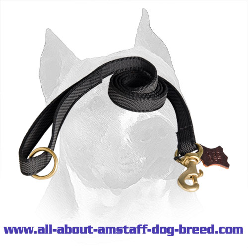 Nylon Stitched Amstaff Lead Waterproof