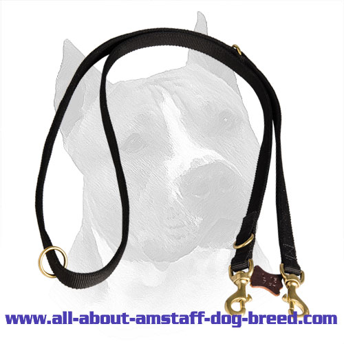 Nylon Lead for Amstaff with Gold-like O-Rings