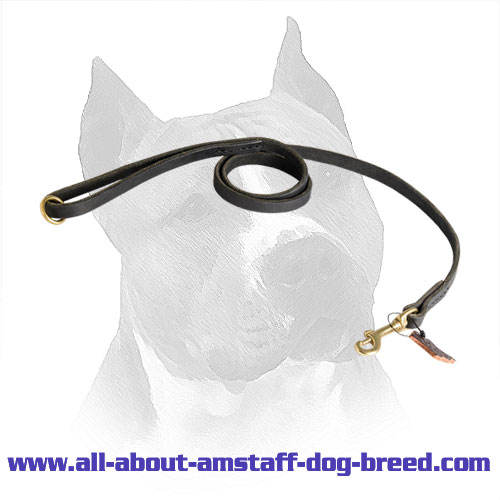 Leather Lead Amstaff Oiled Strap
