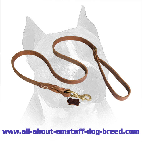 Amstaff Braided Leather Leash With Durable Handle