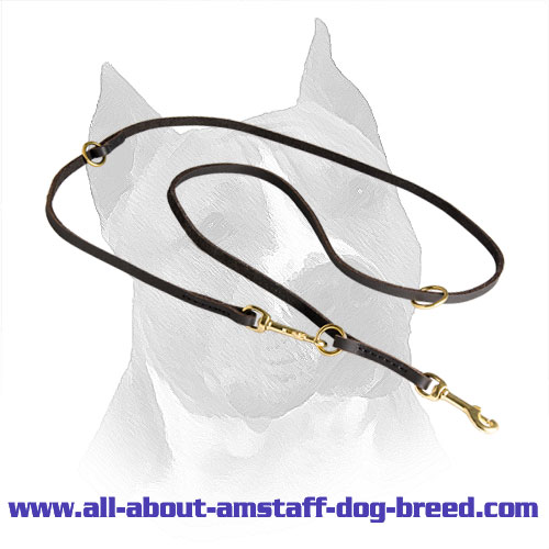 Leash Amstaff Leather Dog Coupler