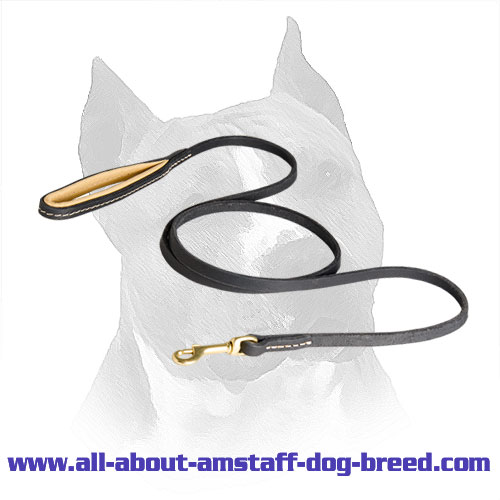 Stitched Leather Amstaff Leash with Rust Resistant Snap Hook