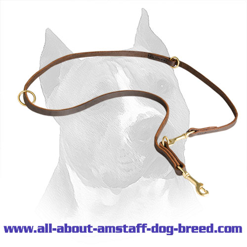 Amstaff Leather Leash for Daily Walking