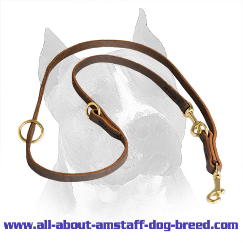 Amstaff Breed Leather Leash with Massive Snap Hooks