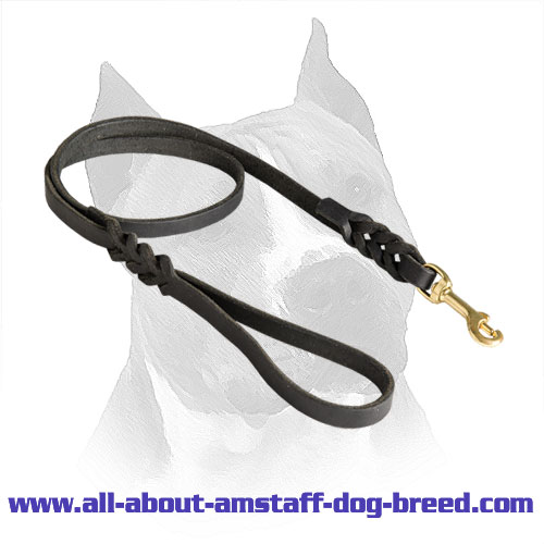 Leather Amstaff Leash with Massive Brass Snap Hook