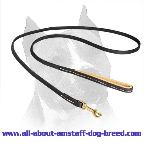 Leather Leash for Amstaff with Nappa Padding on Handle