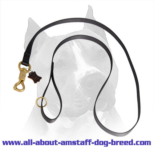 Nylon Leash Amstaff Brass Fittings