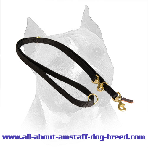 Nylon Leash for Amstaff Effective Training