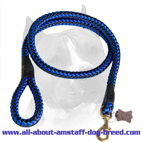 American Staffordshire Terrier Leash Nylon with Stitched Brass Snap Hook