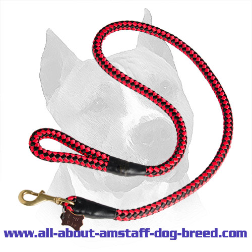 Amstaff Nylon Leash With Easy in Use Handle