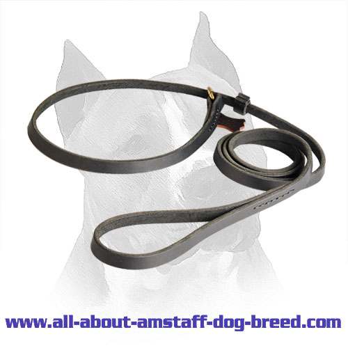 Combination of Amstaff Leather Leash and Slip Collar for Easy Training and Walking