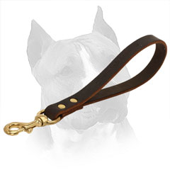 Leather Dog Leash for Amstaff with Brass Riveting
