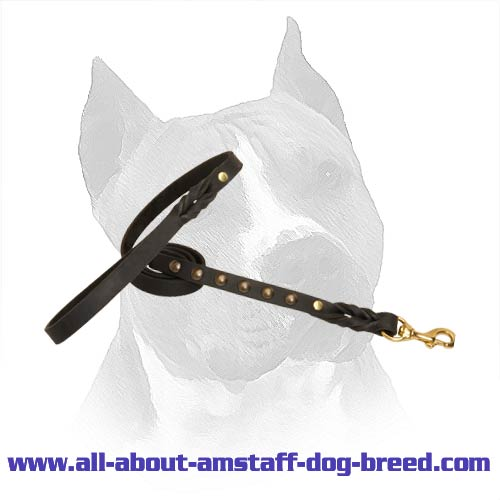 American Staffordshire Terrier Dog Leash With Comfy  Handle