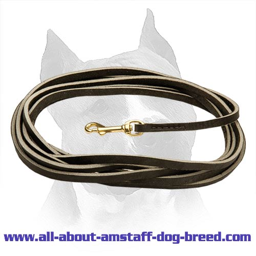 Stitched Near The Snap Hook Leather Dog Leash