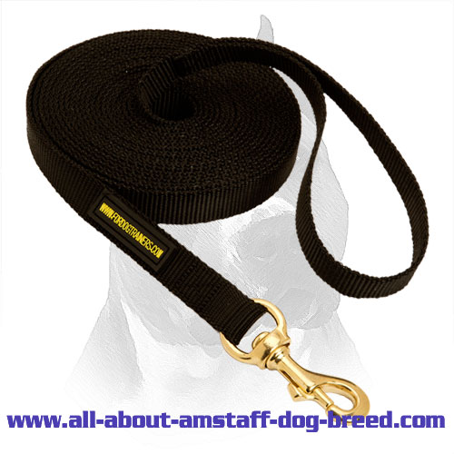 Exclusive Durable Nylon Dog Leash