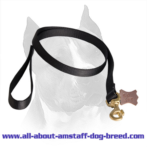 Nylon Dog Leash for Amstaff with Firm Hardware