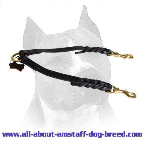 Amstaff Leather Braided Coupler Brass Hardware