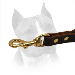 Brass Snap Hook Easily Attached to Collar / Harness