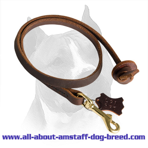 Amstaff Lead Leather Brass Snap Hook