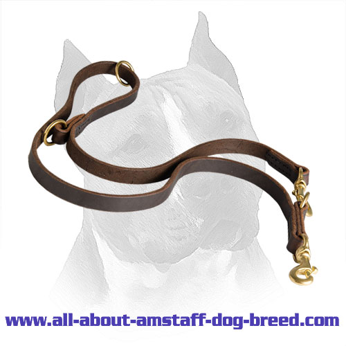 Amstaff Leather Lead Dog Coupler
