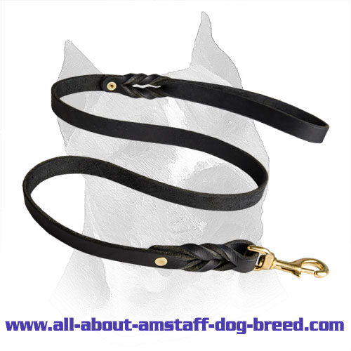 Amstaff Leash Leather Brass Fittings