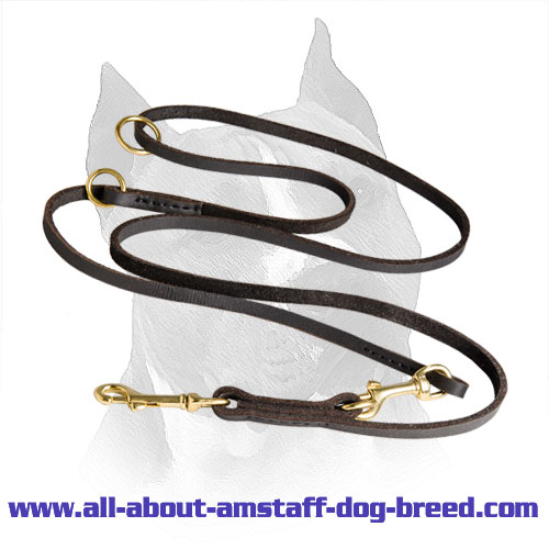 Amstaff Leather Leash Brass Hardware