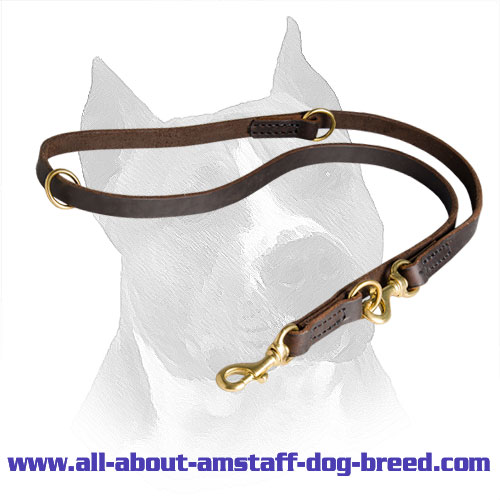 Leash Amstaff Leather Stitched Edges