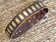 Gorgeous Wide Leather Dog Collar With Plates