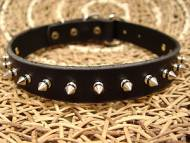 Leather Spiked Dog Collar - 1 row with Silver Spikes