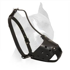 All Inclusive In This Super Leather Muzzle