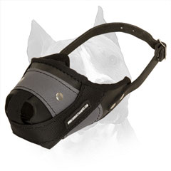 Amstaff Leather And Nylon Dog Muzzle For Successful Protection Training