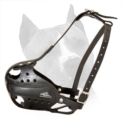Amstaff Leather Dog Muzzle Steel Nickel Plated