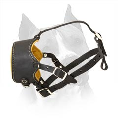 Easy In Use Nappa Padded Amstaff Dog Muzzle With